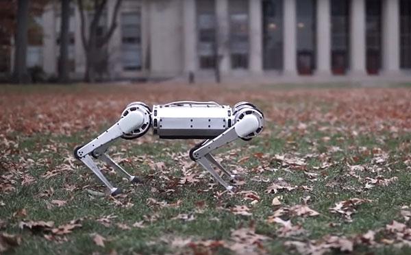 robot-gepard.jpg